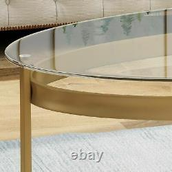 Peterborough Modern Glam Tempered Glass Oval Coffee Table with Iron Frame